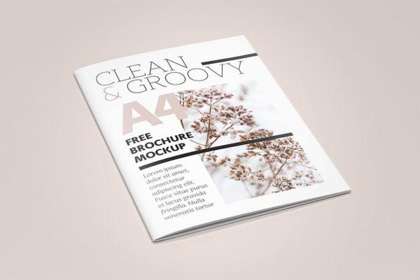 brochure-mockup-free3